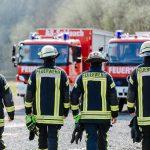 vier Feuerwehrmänner von hinten auf dem weg zu den Feuerwehrautos